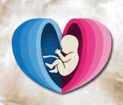Il-percorso-della-nascita-tra-ostetricia-e-neonatologia