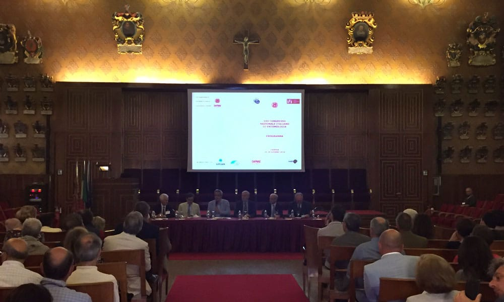 XXV congresso nazionale entomologia event planet group medical & education discussione nella sala in cui si è tenuto l'incontro