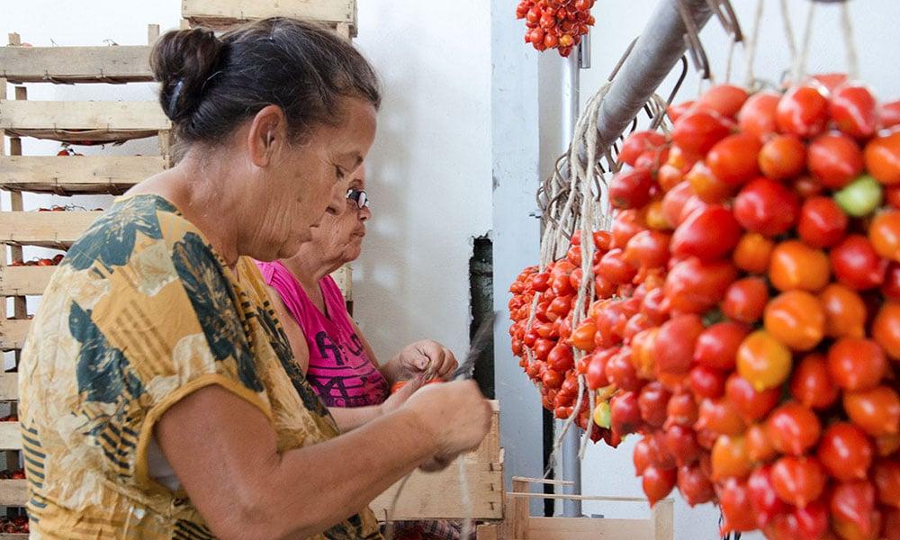 pomorosso d'autore event planet group food & wine lavorazione pomodoro