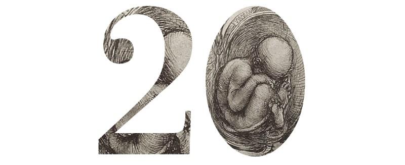 Copertina Evento: Corso Avanzato sulle tecniche di procreazione medicalmente assistita. Archivio Eventi 2012