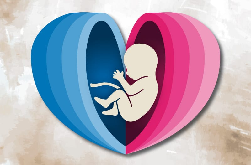 Copertina Evento: Il percorso della nascita tra ostetricia e neonatologia. Archivio Eventi 2012