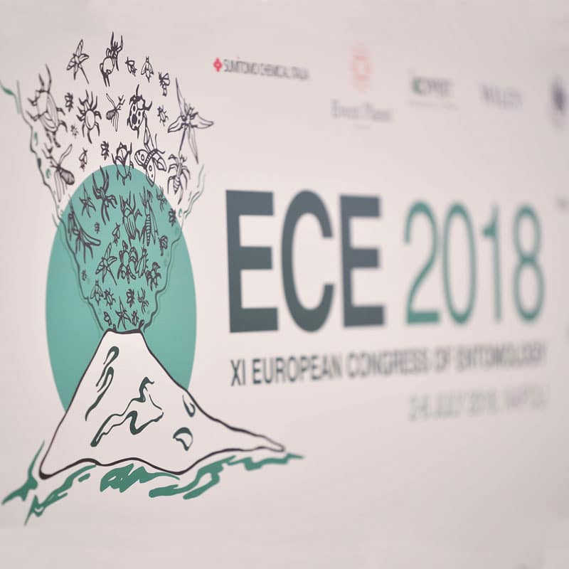 Conference & Event - ECE 2018